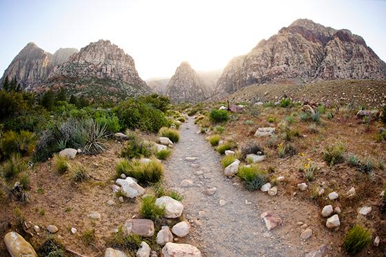 red rock canyon climbing guide