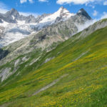 The contrast of alpine and pastoral that defines the Alps