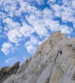 High Sierra Alpine