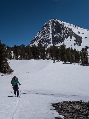 Anyone seen any nice looking ski lines around here?