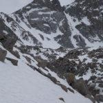 Mt. Lamarck
