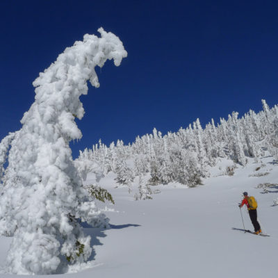 Mammoth Mountain sidecountry